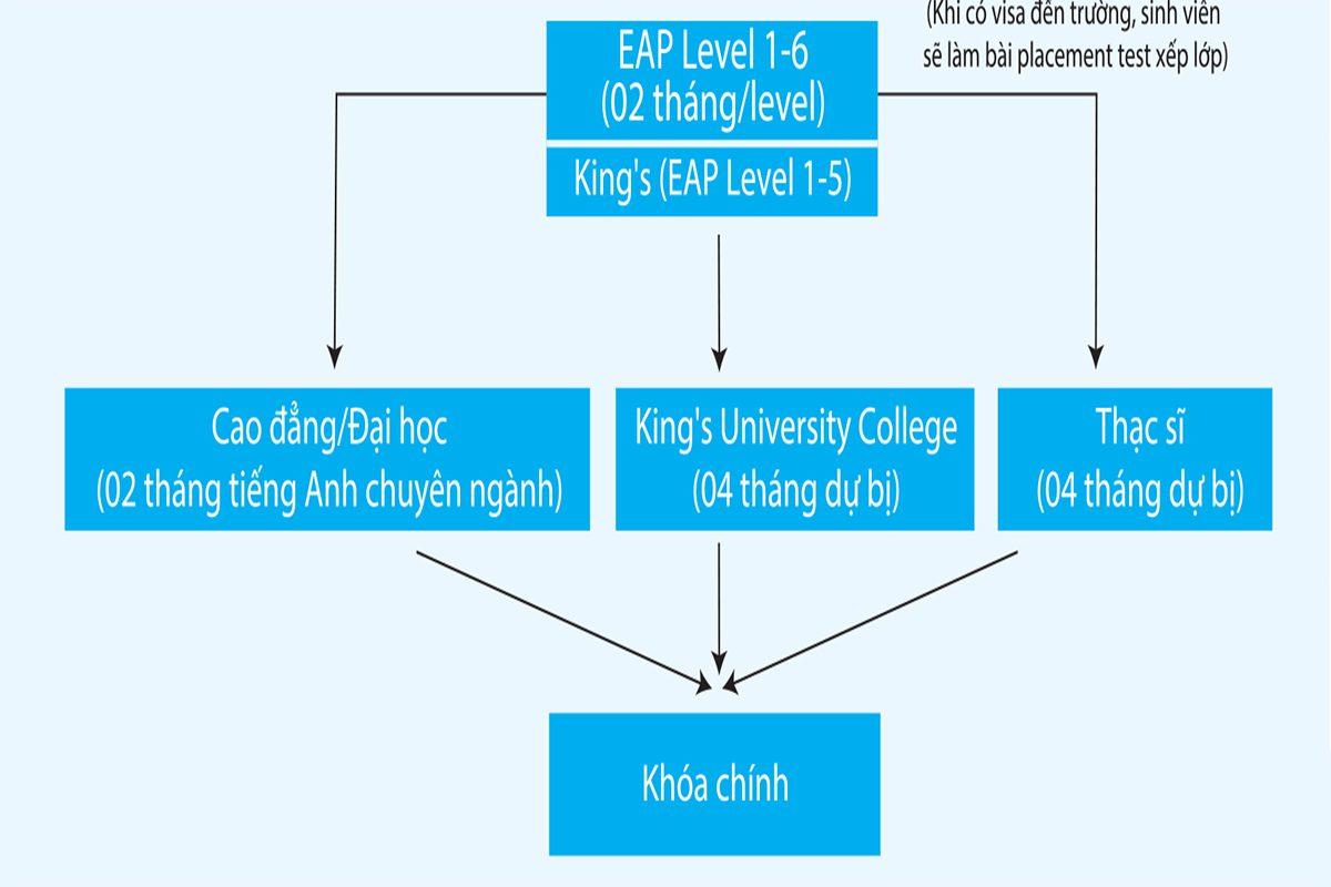 lộ trình học tại iceap