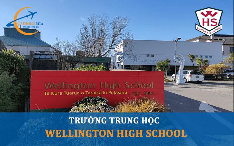 Lối ào trường trung học Wellington High School New Zealand