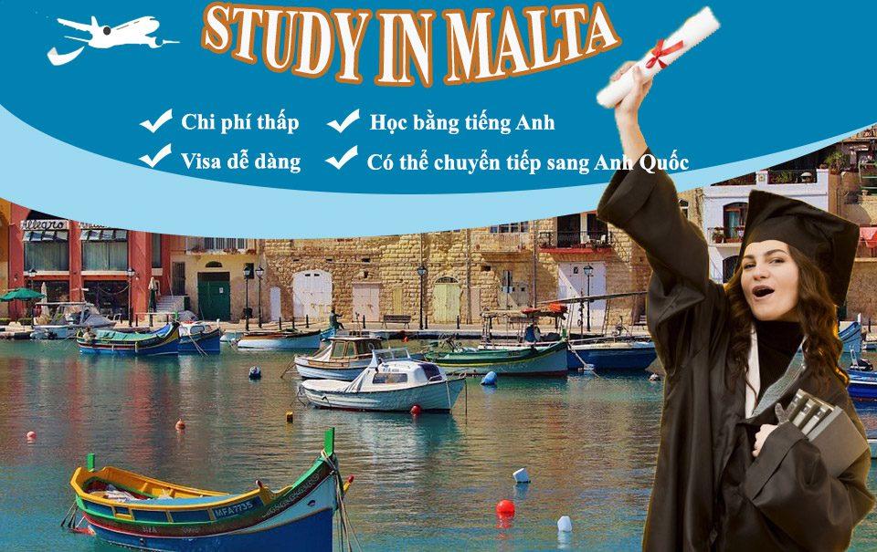 vì sao chọn du học malta