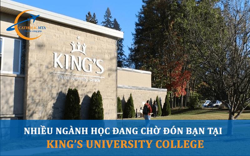 Nhiều ngành học đang chờ đón tại đại học Kings Canada