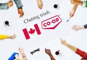 Du học Canada vừa học vừa làm có nên không?