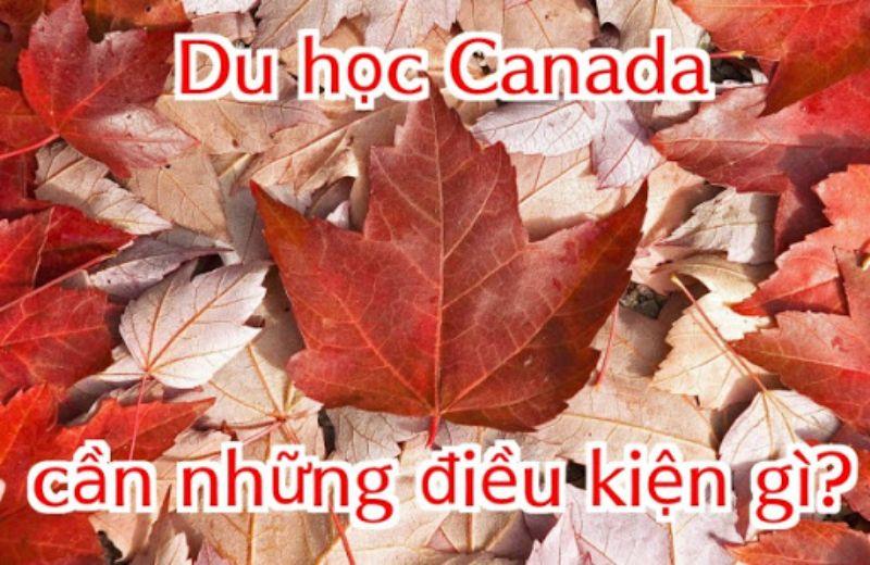 Điều kiện đi du học Canada