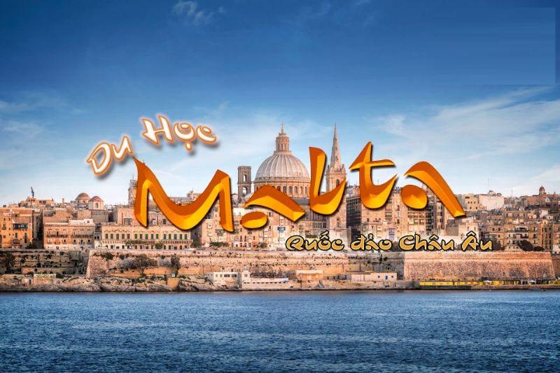 Du học Malta nên học ngành gì
