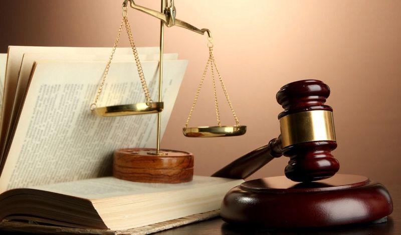 Chọn lựa nagành Luật