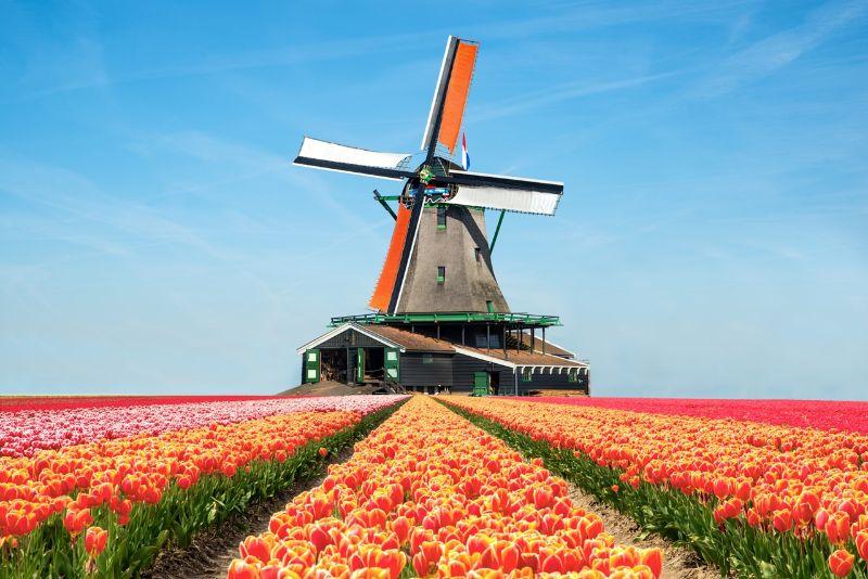 Tại sao nên học ngành truyền thông để du học tại Hà Lan?